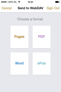 Select a file format